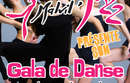 Gala danse 2017
